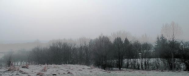 Frühling. Foto: Stefan Krieger.