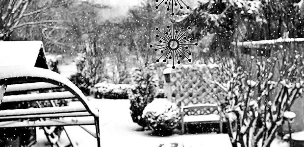 Blick aus dem Küchenfenster. Foto: Stefan Krieger.