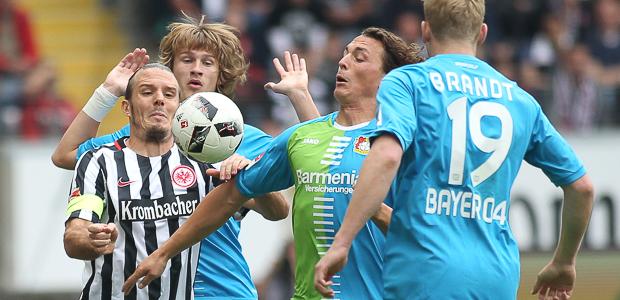 Leverkusener Rudelbildung. Foto: Stefan Krieger.