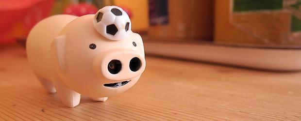 Das Fußballschwein