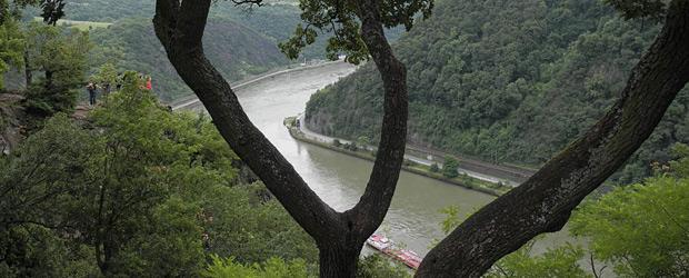 Der  Rhein. Foto: Stefan Krieger