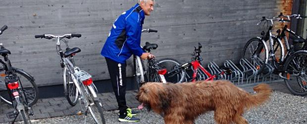 Kein Hund namens Jerry. Foto: Ingo Durstewitz.