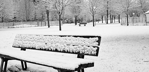 ... wie Schnee, das ist die SGE. Foto: Stefan Krieger.