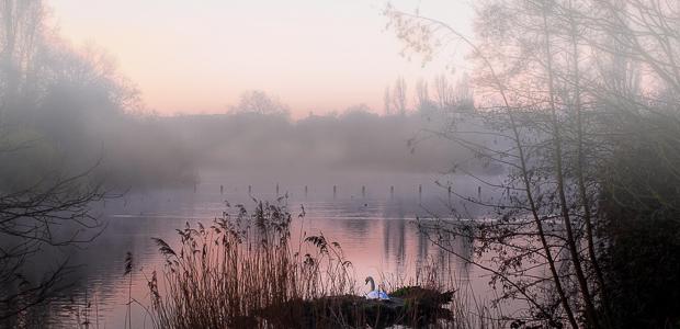 Ein neuer Morgen. Foto: Stefan Krieger.
