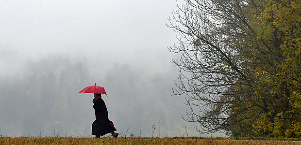 November. Foto: AFP.
